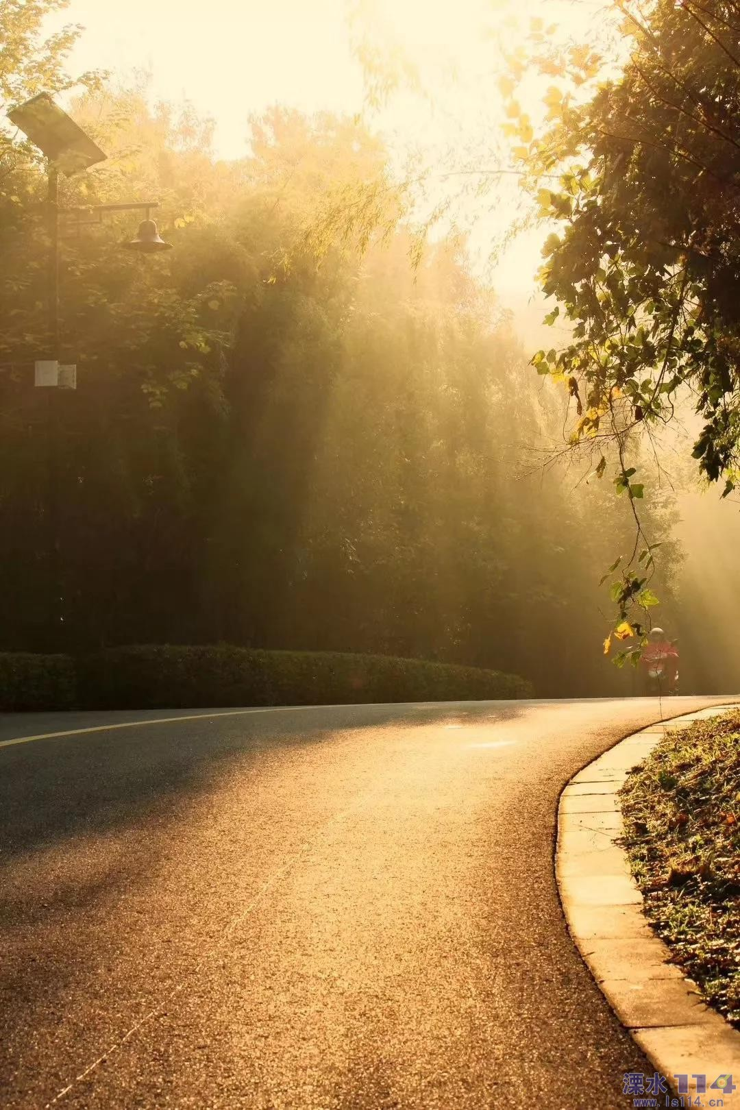 一年中最迷人的季节到了!重阳来这里登高赏秋!