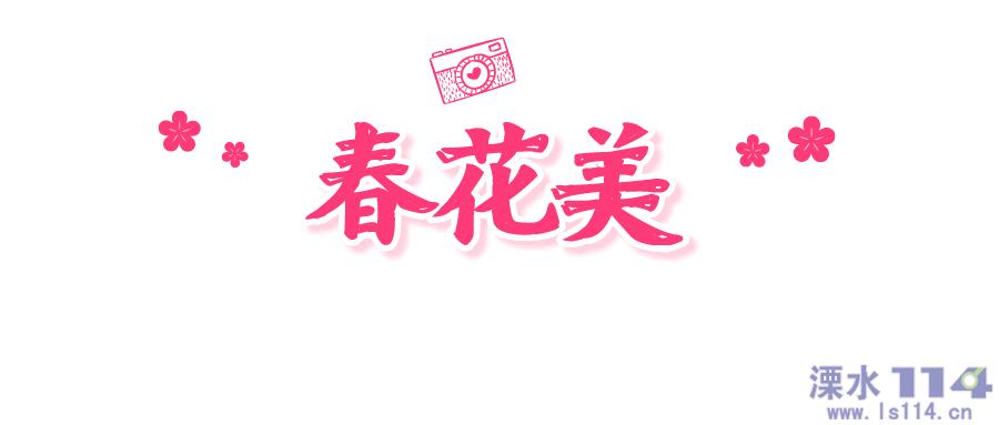微信图片_20210406091824.png